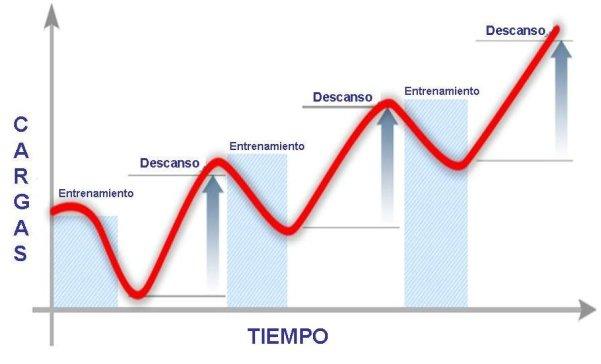 periodos